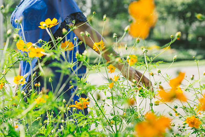 Girl walking and touching beautiful orange flowers. by Jovo Jovanovic for Stocksy United