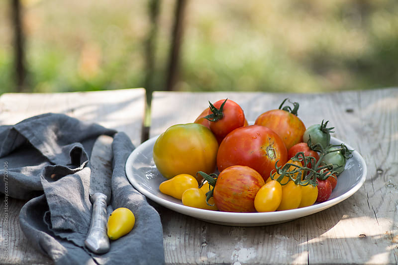 A gray plate with tomatoes by Babett Lupaneszku for Stocksy United