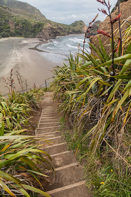 Pathway overlooking a beach. by Robert Zaleski for Stocksy United