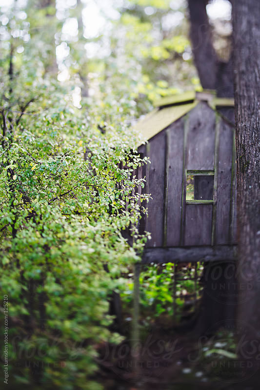 Secret treehouse through the trees by Angela Lumsden for Stocksy United