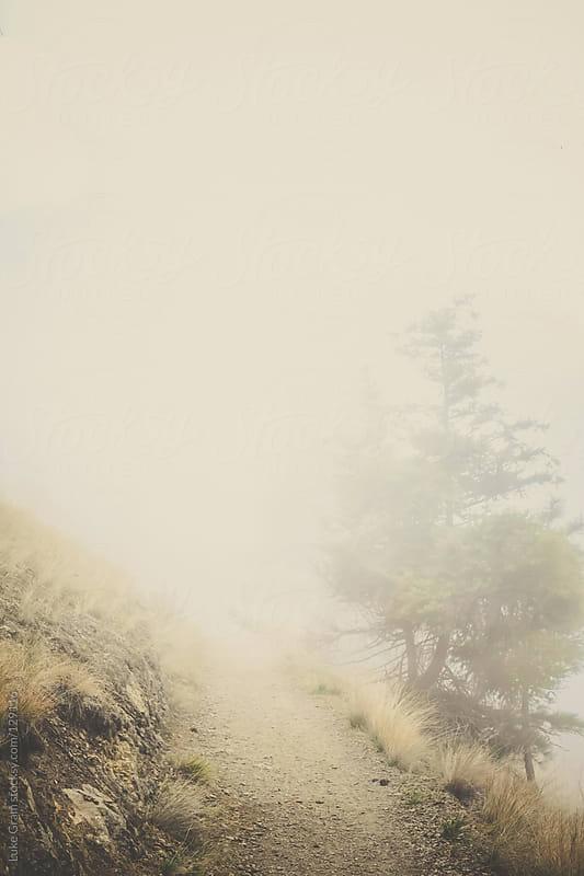 Fog VI by Luke Gram for Stocksy United