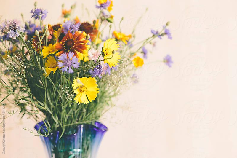 Wild  flowers by Alexey Kuzma for Stocksy United
