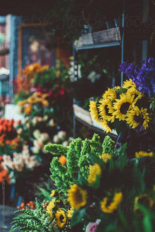 Flowers at florist shop by Tari Gunstone for Stocksy United