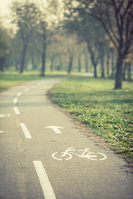 bicycle path in the woods by B & J for Stocksy United