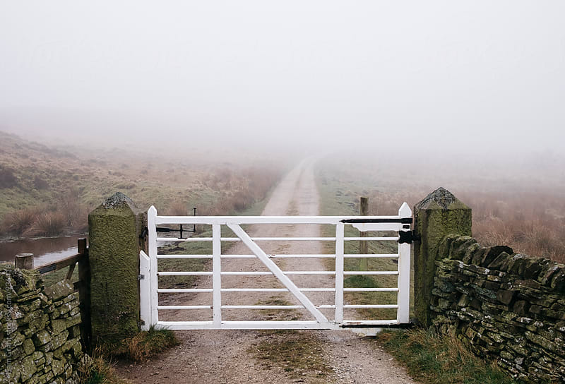 Gate and track in fog on a hillside. Derbyshire, UK. by Liam Grant for Stocksy United