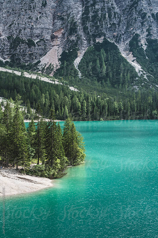 lake view with emerald water and pines by Juri Pozzi for Stocksy United