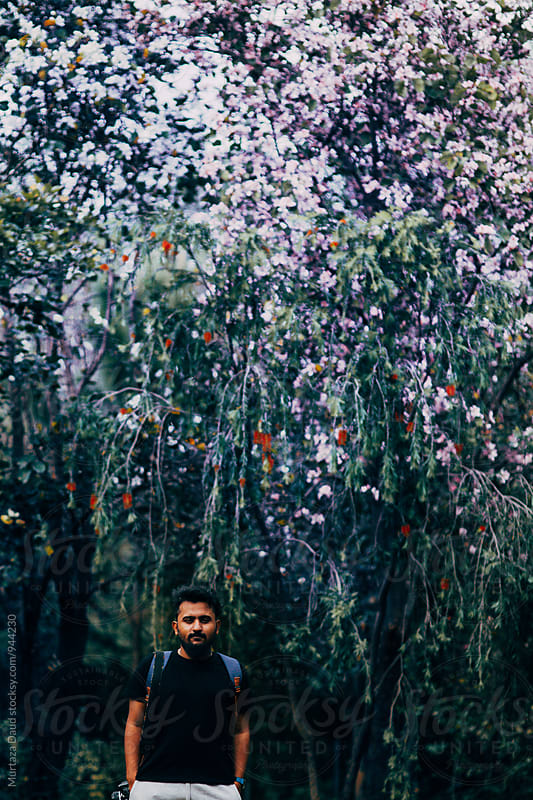 A bearded photographer walking through the spring blossoms in Pakistan by Murtaza Daud for Stocksy United