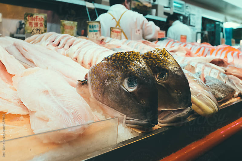 Fish heads, steaks and fillets at fishmarket by kelli kim for Stocksy United