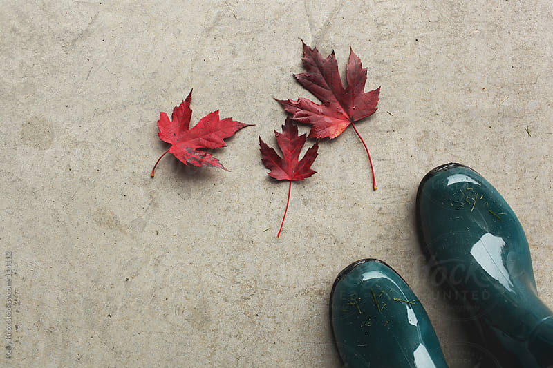 boots and leaves  by Kelly Knox for Stocksy United