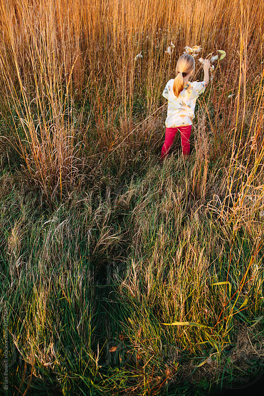 girl exploring field of tall grasses by Brian Powell for Stocksy United