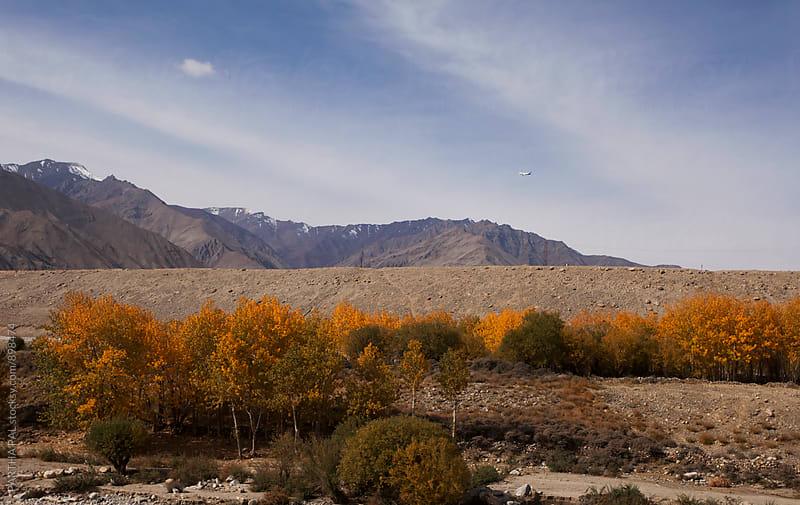 Ladakh landscape and an aeroplane afar by PARTHA PAL for Stocksy United