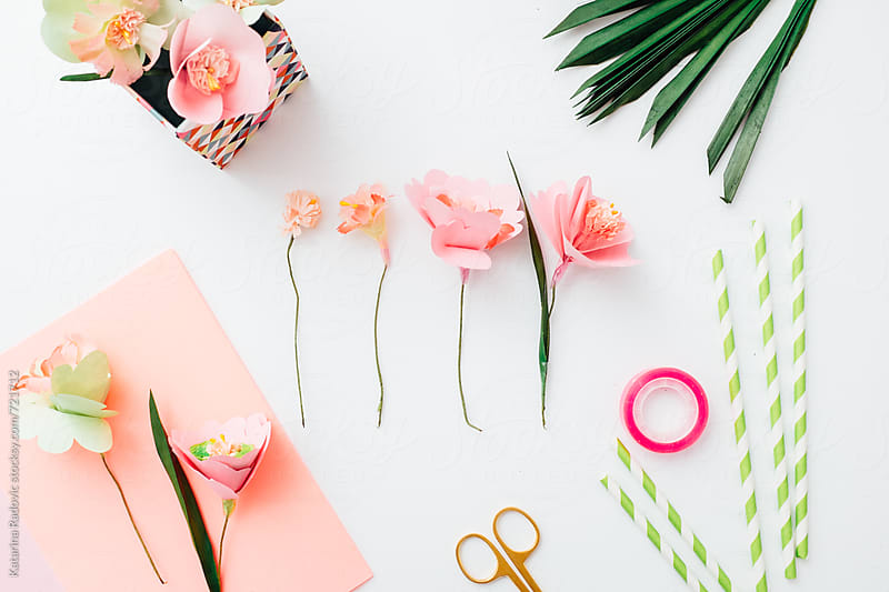 Paper Flowers DIY by Katarina Radovic for Stocksy United