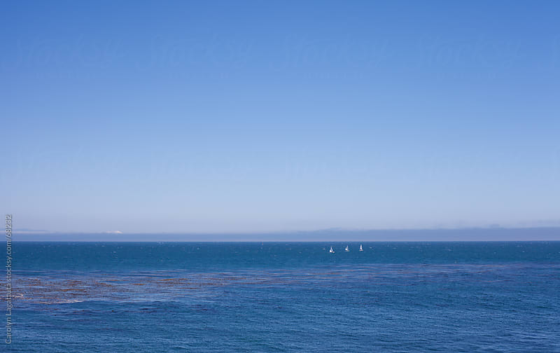 The sailboats on Monterey Bay by Carolyn Lagattuta for Stocksy United