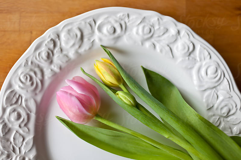 Tulips on a Plate by Zocky for Stocksy United