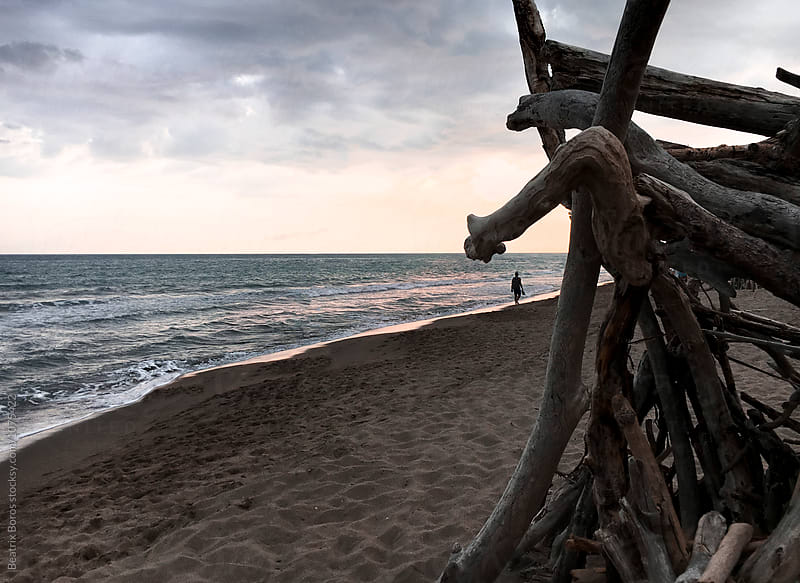 Part of a beach hut made of branches on the beach after sunset by Beatrix Boros for Stocksy United