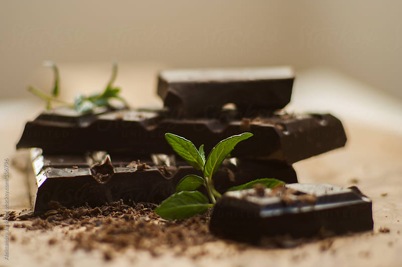 Dark chocolate with mint on the wooden board by Aleksandra Jankovic for Stocksy United