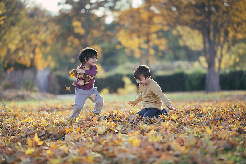 Children having fun throwing maple leafs.  by Dejan Ristovski for Stocksy United