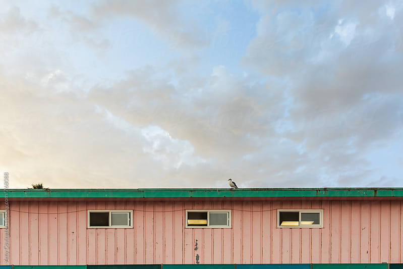 Pink seaside building at sunset by Amy Covington for Stocksy United