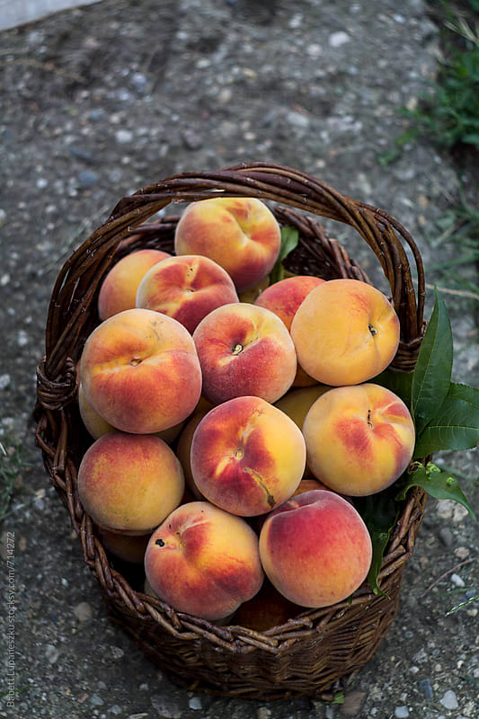 Peaches in the basket by Babett Lupaneszku for Stocksy United