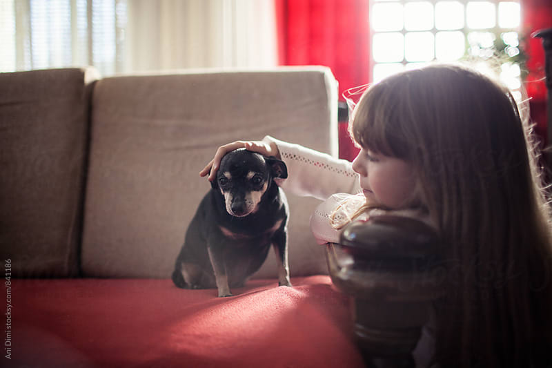 Little girl taking care of her dog at home by Ani Dimi for Stocksy United