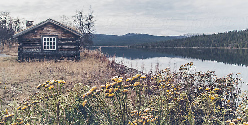 old cabin in the north of Sweden by Andreas Gradin for Stocksy United