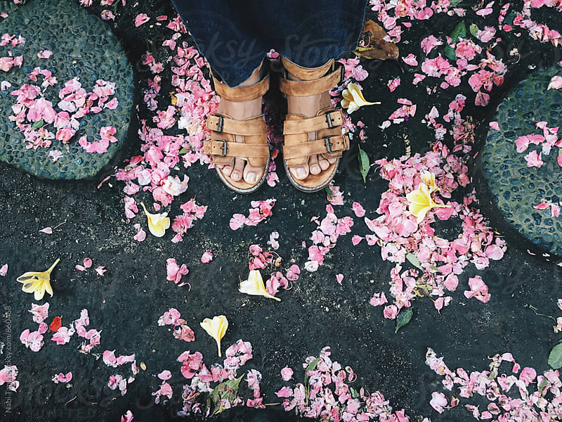 Woman standing with pink rose petals on the earth  by Nabi Tang for Stocksy United