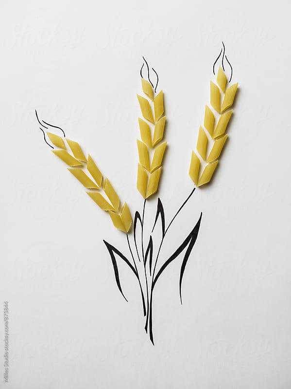 Wheat by Milles Studio for Stocksy United