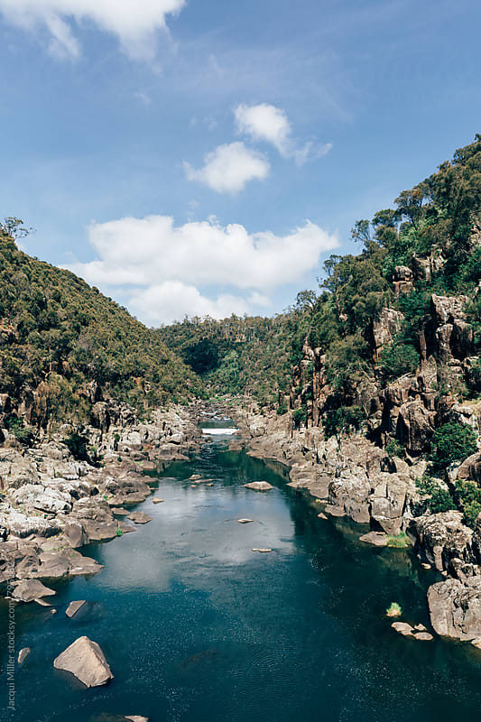 South Esk River from Cataract Gorge Reserve, Launceston, Tasmania - vertical by Jacqui Miller for Stocksy United