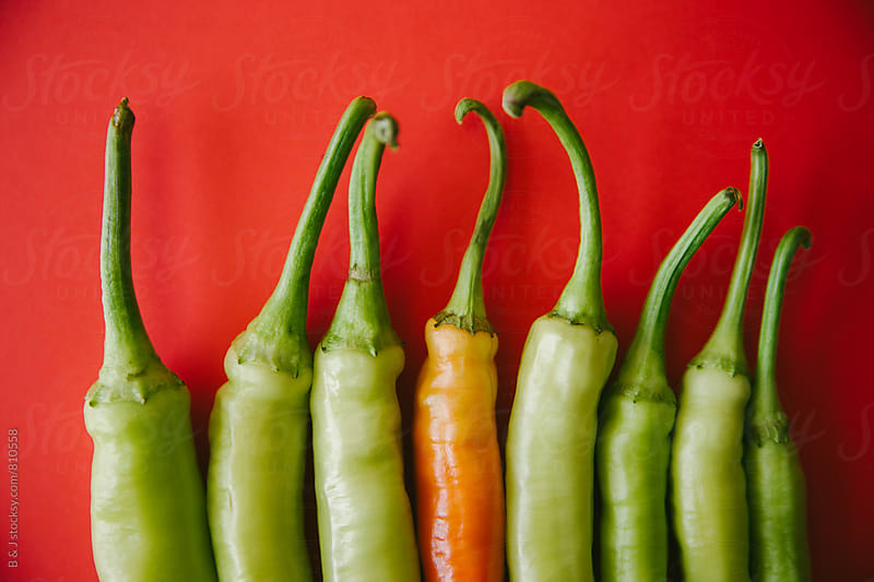 Arranged green peppers on red background by B & J for Stocksy United