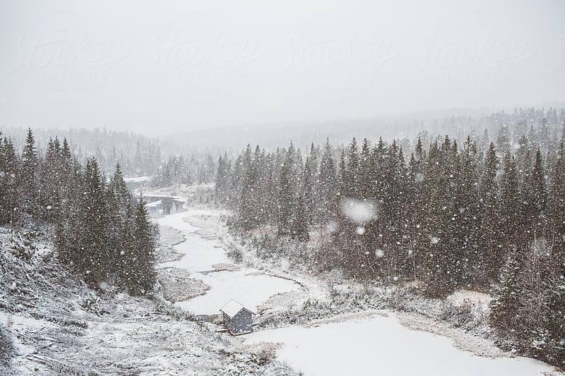 Snow in Norway by Sophia van den Hoek for Stocksy United