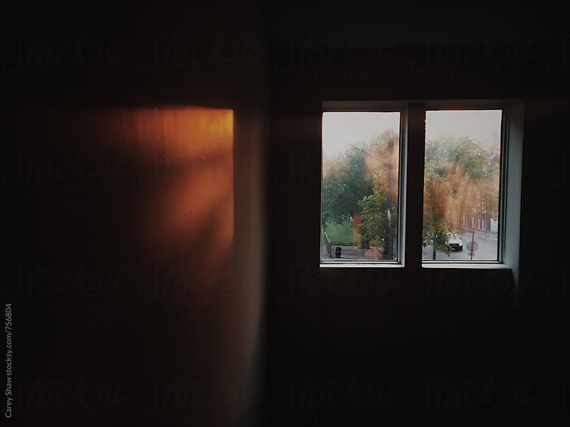 Fall view through window by Carey Shaw for Stocksy United