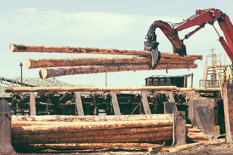 Vintage view tree logs being picked up by a timber log grabber by Mihael Blikshteyn for Stocksy United
