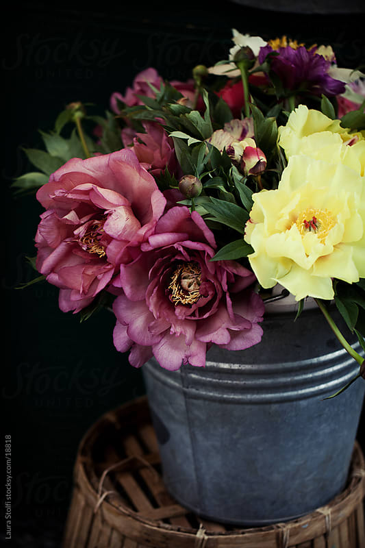 Colorful Peonies bouquet in an old enamel can on dark background by Laura Stolfi for Stocksy United
