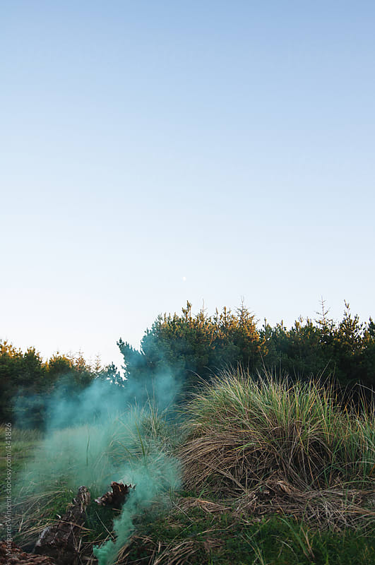 smoke bomb in nature by Margaret Vincent for Stocksy United