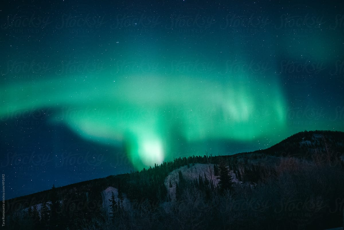 Northern Lights At Chena Hot Springs In Fairbanks, Alaska By Tara Romasanta  For Stocksy United