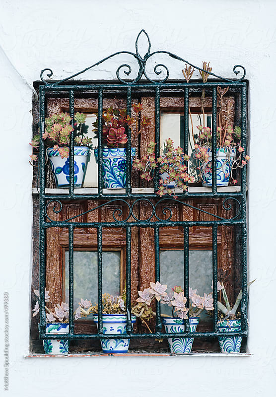 Old house window on white plaster wall with flower pots by Matthew Spaulding for Stocksy United