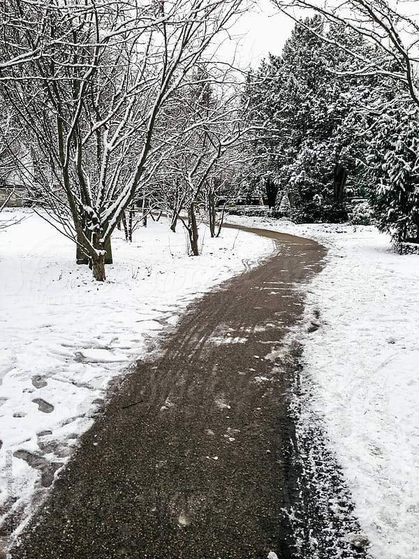 Snowy Path by Agencia for Stocksy United