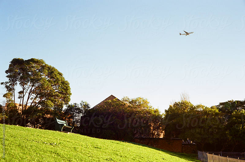 A plane taking off in Sydney by Reece McMillan for Stocksy United