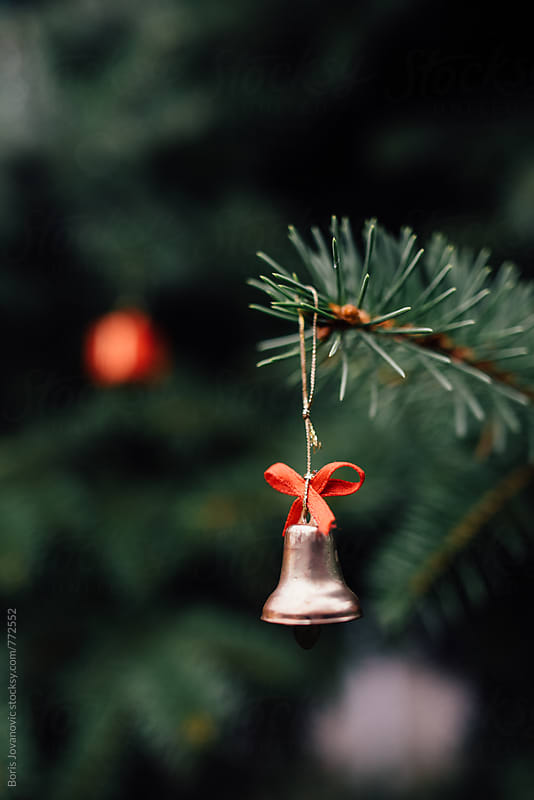 Close up of Christmas decoration on the outdoors pine tree by Boris Jovanovic for Stocksy United