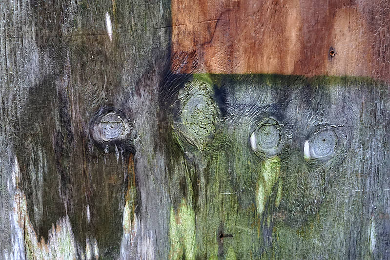 Weathered old wooden panel by Marcel for Stocksy United