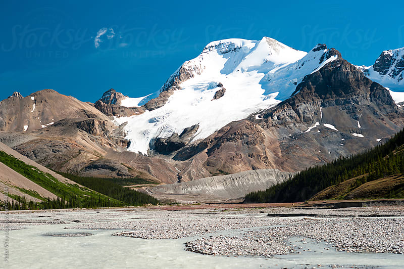 Jasper National Park: Boundary Peak with Athabasca River by Peter Wey for Stocksy United