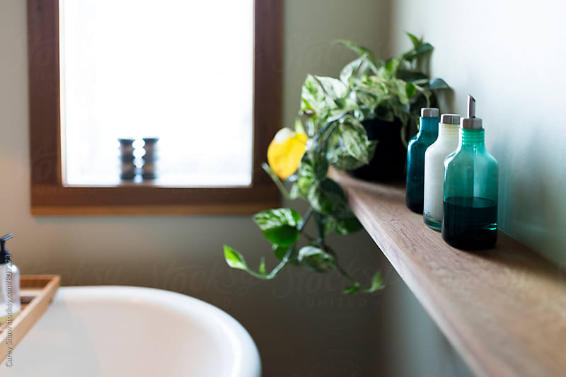 Modern bathroom decor by Carey Shaw for Stocksy United