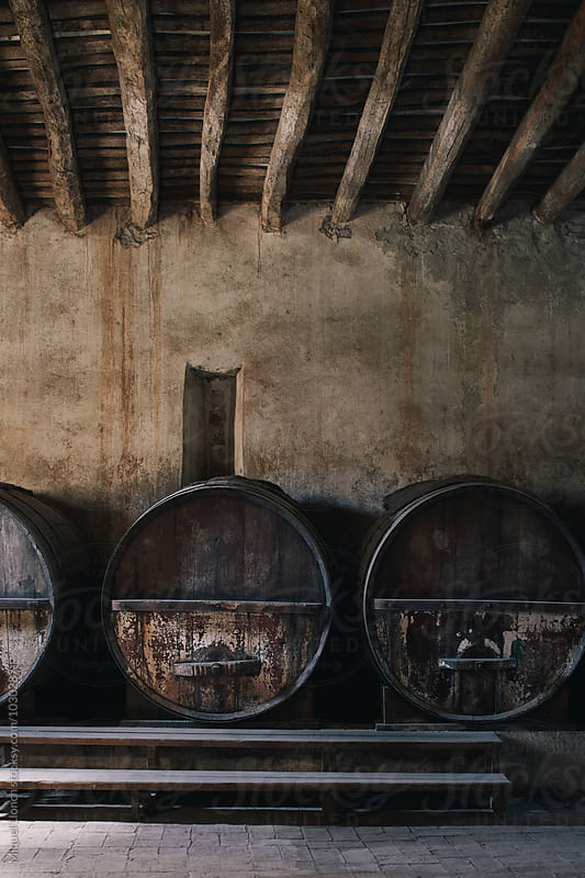 Big old barrels in a traditional cellar by Miquel Llonch for Stocksy United