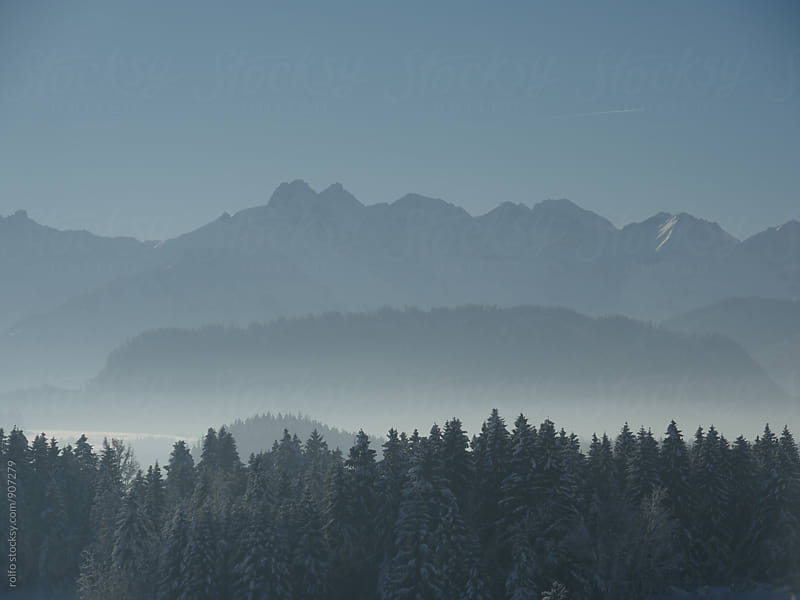 Beautiful landscape of forest in mountains covered with snow by rolfo for Stocksy United