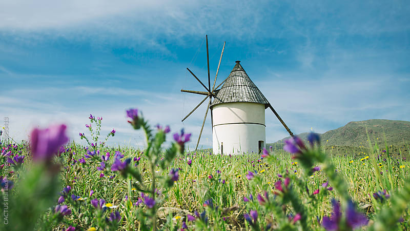 Windmill in Andalusia Spain by CACTUS Blai Baules for Stocksy United