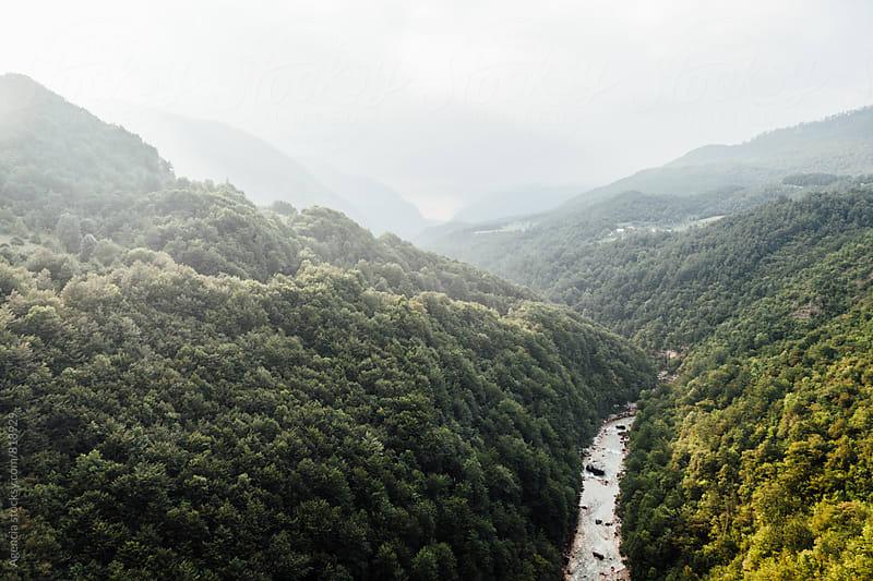 Tara Canyon by Agencia for Stocksy United