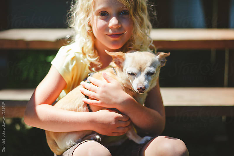 Love for a chihuahua. by Cherish Bryck for Stocksy United