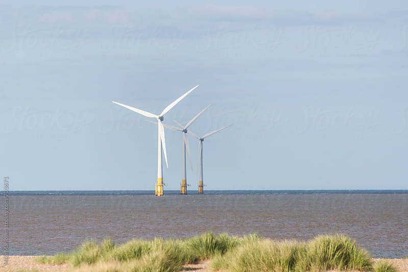 Line of three wind turbines at sea with grass in foreground by Mike Marlowe for Stocksy United