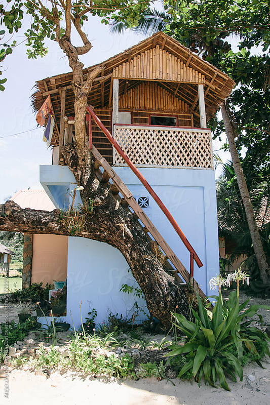 Tree house made of wood by Alejandro Moreno de Carlos for Stocksy United