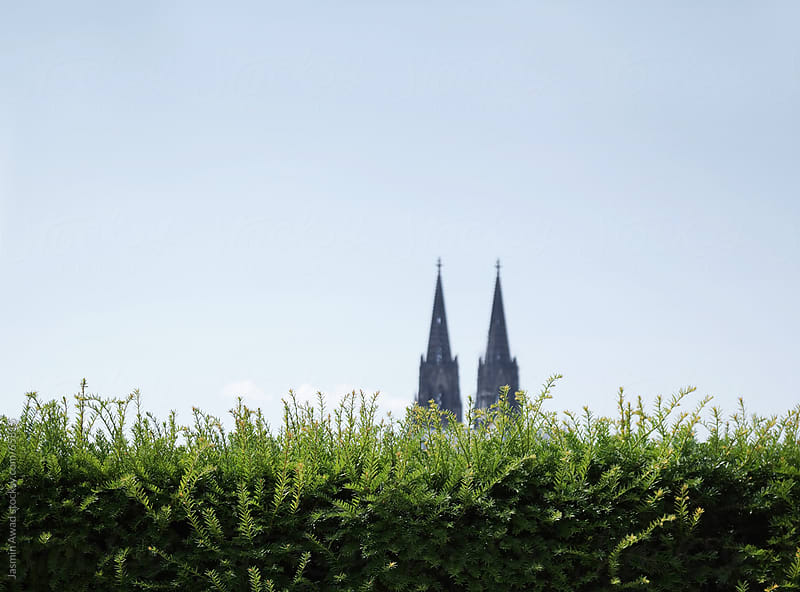 Green hedge with Cologne Cathedral in Germany in the background by Jasmin Awad for Stocksy United
